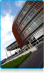 Study at Wittenborg University | Study in Apeldoorn, the Netherlands